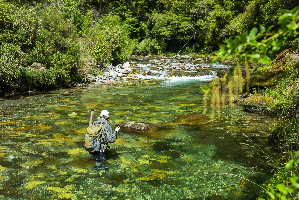 Fly fishing angler in a river surrounded by beautiful nature